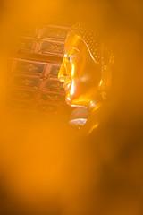 _SZN5922 (Thadsak Yingskul) Tags: buddhastatuemonthondayreligionbackgroundbuddhismsilhouett buddha statue monthon day religion background buddhism silhouette big buddhist golden temple makhabucha thailand ansahabucha head visakabucha art asia sculpture gold culture religious meditation face