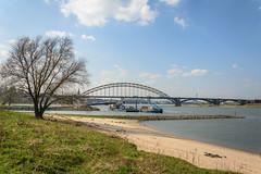Nijmegen 365 (stevefge) Tags: nijmegen gelderland water rivers waal waalbrug waalstrand bridges trees bomen landscape boog nederland netherlands nl nature natuur nederlandvandaag reflectyourworld