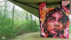 Mehsos / Anderlecht - 1 apr 2017 (Ferdinand 'Ferre' Feys) Tags: bxl brussels bruxelles brussel belgium belgique belgië streetart artdelarue graffitiart graffiti graff urbanart urbanarte arteurbano neerpede mehsos
