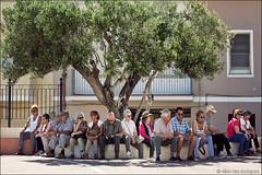 castelsardo (heavenuphere) Tags: castelsardo sassari sardegna sardinia sardinie italia italy europe island town square people tourists olive tree 24105mm