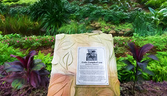 Tribute (Ⅾorothy) Tags: colincampbell tribute garden carved sandstone romastreetparkland brisbane sign context sc417