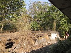 (Railroad Rat) Tags: rishikesh india uttarakhand himalaya footfill northern hindi water earth fire wind shiva shambo ganesh durga parvati vishnu manu rudraksh hindu buddha mahirishi mahesh beatles ganga bum bholenath namah shivaya hindustan