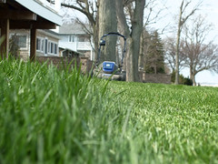 2017-04-10 Day 100/365 (clarinetgirl) Tags: 3652017 0410 mowing april2017