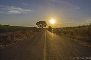 Estrada Cantareira