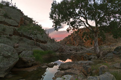 Reedy Creek rock pool, Mannum Falls (Trace Connolly) Tags: australia southaustralia sunrise landscape tree red yellow orange blue pink reflection reflections creek water rocks boulder river mannum reedycreek cliff cliffs hike countryside country australian pool pools