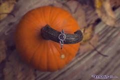 Alyssa & Travis (alyssamcesa) Tags: fall halloween leaves vintage pumpkin engagement october couple pennsylvania engagementring ring edit