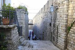 City wall, Dubrovnik (retheesh k r) Tags: travel history coast europe croatia unesco worldheritagesite dubrovnik adriatic hrv dalmatia photographs|travel mg8792fil