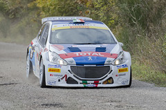 2 Rally Roma Capitale - 2014 (AleMex66) Tags: max roma rally capitale sabina peugeot lazio 208 t16 rieti rendina casaprota nikonclub andreucci d7000 nikoclub rallyproject