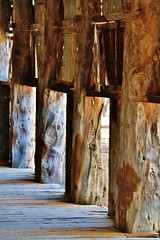 Mungo National Park - Zanci Homestead shearing shed #3 (robynbrody) Tags: wood light history abandoned industry rural ruins sheep farm farming shed australia historic nsw agriculture deserted shearing mungonationalpark