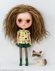 A Grumpy Girls needs a Grumpy Cat