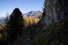 near Crap Putèr (cracked sensor edition) (Toni_V) Tags: autumn alps schweiz switzerland nationalpark europe hiking 28mm herbst rangefinder crack trail alpen svizzera wanderung m9 wanderweg 2014 graubünden grisons suisses svizra parcnaziunalsvizzer unterengadin valplavna grischun swissnationalpark elmaritm ©toniv leicam9 141018 ilfuornfuorclavaldalbotschcrapputèrardez l1019125 sensordefektcracked sensorsensor