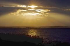 Sonntag (100er) Tags: lake water relax nikon wasser steinhude steinhudermeer 100er d5100