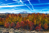 Where Skittles Grow (Darvin Atkeson) Tags: autumn sky mountains fall colors grove conway nevada trails sierra summit peaks aspen contrails eastern skittles darvin atkeson darv lynneal yosemitelandscapescom