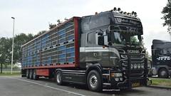 NL - Jakob Schipper Scania R09 TL (BonsaiTruck) Tags: w camion trucks livestock scania lorries schipper akob