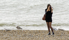 Girl Taking Pictures On The Beach (grahambrown1965) Tags: camera sea woman seagulls bird beach water girl birds sussex brighton pentax seagull gull gulls shingle sigma olympus 70200 beachfront olympuscamera pentaxk5iis k5iis hdpentaxdaafrearconverter14xaw
