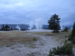 Upper Geyser Basin in Yellowstone (richardblack667) Tags: landscapes parks yellowstone nationalparks geysers