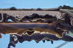 Panni stesi ad asciugare al sole (iLouis81) Tags: italy canon vintage eos italia 7d 28 prospettiva 135mmf28 manuallens tair11a135mmf28