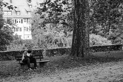 (der_w) Tags: street people urban bw tree river shift tilt fluss baum neckar tse personen tübingen tiltshift badenwürttemberg schwarzweis tse90mm flus neckarinsel streetfotography