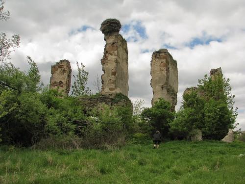 ruina
