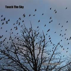 Touch The Sky (Avard Woolaver) Tags: birds illustration photo artwork song itunes spacetravel cdcover touchthesky avardwoolaver cbcmusic