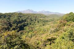 (GenJapan1986) Tags: 2014      nikond600 landscape distagont225 zf2 travel japan yamanashi carlzeiss