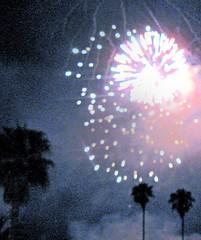 fireworks over state street : santa barbara (2007) (he who would be lost) Tags: santa trees cloud tree night scott cloudy fireworks explosion firework palm barbara richard torbakhopper