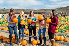 Candid Kids (AdrienneCredoPhotography) Tags: california autumn friends fall love halloween clouds season pumpkin nikon candid patch irvine d3200