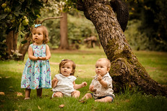 Lia, Lyla & Ryan (James W Atkins) Tags: summer sun cousins orchard field green tree trees girl boy toddler baby babies
