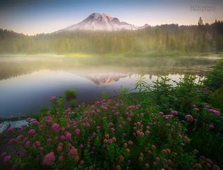 Happy 118th Birthday Mount Rainier National Park !!