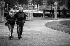 (rennerfotografie) Tags: streetfotografie street sw sony olympus om zuiko 50mm manual