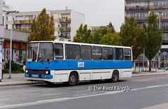 Ikarus 260.43 554 in Veszprém (TheRealKlingl3r) Tags: ikarus 260 26043 ddr bus dieselbus veszprém öpnv public transport nahverkehr