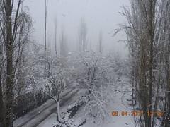 DSCN2309[1] (drmohammad_ibrahim200760) Tags: heavy snow fall skardu month april