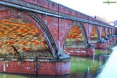 lato nord (archgionni) Tags: ponte bridge archi arcs mattoni bricks rosso red fiume river po acqua water riflessi reflections verde green luce light prospettiva perspective colori colours christiangroup