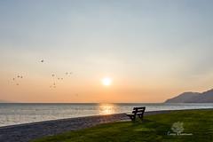 Sunset (Conrad Zimmermann) Tags: 2017 coucherdesoleil lac lake landscape paysage saison season suisse sunset switzerland vevey vaud ch