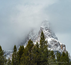 Castle Mountain Emerging (C_B_Images) Tags: spring nature canada banffnationalpark alberta 150