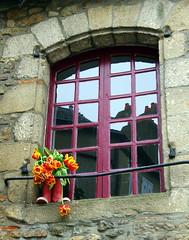 FENETRE VANNES (Explore) (Marie-Laure Larère) Tags: bretagne vannes fenetre botte tulipe reflet explore