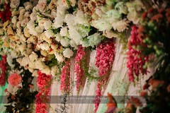 best caterers in lahore , best catering company in lahore , best weddings caterers in Pakistan, best caterers in Pakistan, best catering company in Pakistan (a2zeventssolutions) Tags: decorators weddingplannerinpakistan wedding weddingplanning eventsplanner eventsorganizer eventsdesigner eventsplannerinpakistan eventsdesignerinpakistan birthdayparties corporateevents stagessetup mehndisetup walimasetup mehndieventsetup walimaeventsetup weddingeventsplanner weddingeventsorganizer photography videographer interiordesigner exteriordesigner decor catering multimedia weddings socialevents partyplanner dancepartyorganizer weddingcoordinator stagesdesigner houselighting freshflowers artificialflowers marquees marriagehall groom bride mehndi carhire sofadecoration hirevenue honeymoon asianweddingdesigners simplestage gazebo stagedecoration eventsmanagement baarat barat walima valima reception mayon dancefloor truss discolights dj mehndidance photographers cateringservices foodservices weddingfood weddingjewelry weddingcake weddingdesigners weddingdecoration weddingservices flowersdecor masehridecor caterers eventsspecialists qualityfoodsuppliers