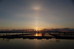 Soluppgång (evisdotter) Tags: soluppgång sunrise morning light sky reflections birds sooc msf harbor slemmern mariehamn