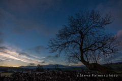 Early Morning Tree (Outdoorjive) Tags: other desktop sunsetsunrise flikr landscape winter lounge events dropbox places peakdistrictnorthpennines holiday uk