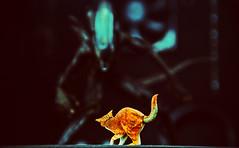 Alien (RK*Pictures) Tags: space spaceship creature alien eggs scienceofficer sciencefiction science ridleyscott sigourneyweaver horror monster movie nostromo actionfigure sciencefictionhorrorfilm 1979 classic dark planet universe stars yaphetkotto ianholm johnhurt tomskerritt harrydeanstanton veronicacartwright facehugger ripley spacecraft crew lambert dallas brett kane ash parker mother cat jonesy destroy hostile cold black teeth hrgiger toy moebius weylandyutani narcissus compressionsuit android acid xenomorph neca actionfigurephotography darkness shuttle stasis ventilationshafts chestburster motiontracker flamethrower transmission warning jones helmet light alert danger muthur cult deadly mcfarlanetoys