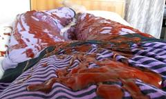 Sleepsuit ketchup (wetmuddy) Tags: sleepsuit schlafanzug messy wam gunge ketchup fun pyjama pijama pajamas