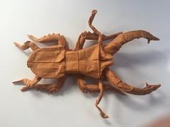 Lucanus elaphus (Baltorigamist) Tags: lucanus elaphus origami elephant stag beetle