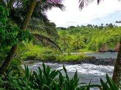 Big Island (Leguman vs the Blender) Tags: bigisland hawaii polynésie polynesia