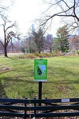 Central Park West (AWJ-photography) Tags: awjphotography newyorkcity nyc centralpark centralparkwest thedakota strawberryfields imagine tavernonthegreen nycskyline johnlennon rosemarysbaby