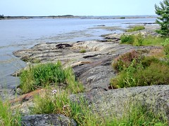 Insel Torrö (damestra) Tags: insel torrö schweden sweden sverige ö ostsee östersjön balticsea südschweden östergötland