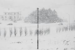 冰島風光 (游青峰 Daniel) Tags: 冰島 白日夢冒險王 canon6d iceland ísland 北歐五國 風景攝影 landscape youcingfong 游青峰 dream 背包客 旅遊 獨自旅行享受自己 冰島風光 自然風光 風景 vik 維克 暴雪 雪景
