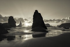 Sentry (prose729) Tags: bandon oregon pacificnorthwest ocean coast
