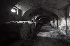 Wine Cellar (www.forgottenheritage.co.uk) Tags: ue explore exploration derelict cellar underground subterranean italy urbex abandoned empty silent quiet dusty below under italia
