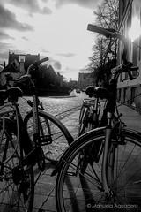 #bicicletas #bicis #bikes #contraluz #backlighting#2016 #brujas #brugge #bruges #bélgica #belgium #ciudad #city #viajar #travel #viaje #trip #paisaje #landscape #blancoynegro #blackandwhite #photography #photographer #picoftheday #sonystas #sonyimages #so (Manuela Aguadero) Tags: blackandwhite landscape trip brujas bicicletas city sonystas 2016 bicis sonya350 sonyimages ciudad brugge bikes bélgica viajar picoftheday belgium backlighting photography sonyalpha sonyalpha350 contraluz paisaje photographer blancoynegro alpha350 bruges viaje travel
