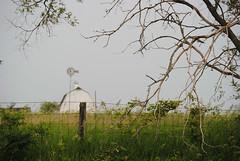white barn afar (David Sebben) Tags: white barn windmill cedar iowa fenceline